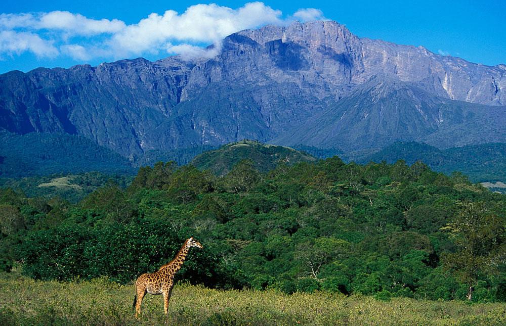 Arusha_National_Park