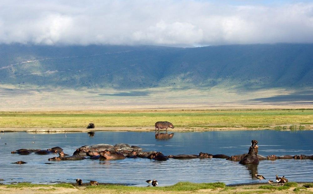 Ngorongoro_Conservation_Area