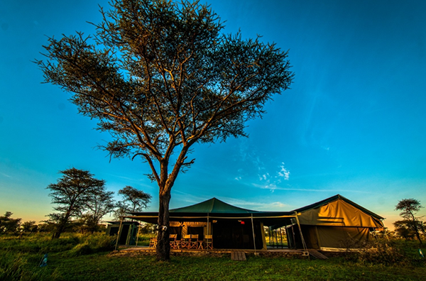 Serengeti National Park Area