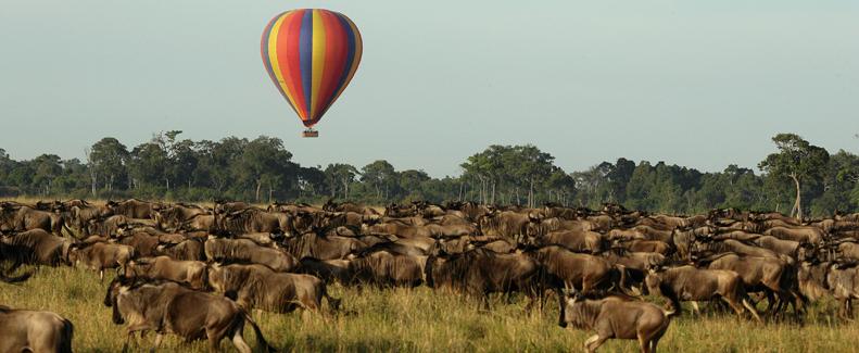 Tanzania Best Safari Experiences